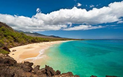 The Best Sights in Upcountry Maui